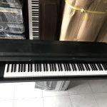 Đặc điểm nổi bật của đàn Korg và giá đàn piano Korg mới nhất tại TP HCM